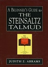 eBook A Beginner's Guide to the Steinsaltz Talmud